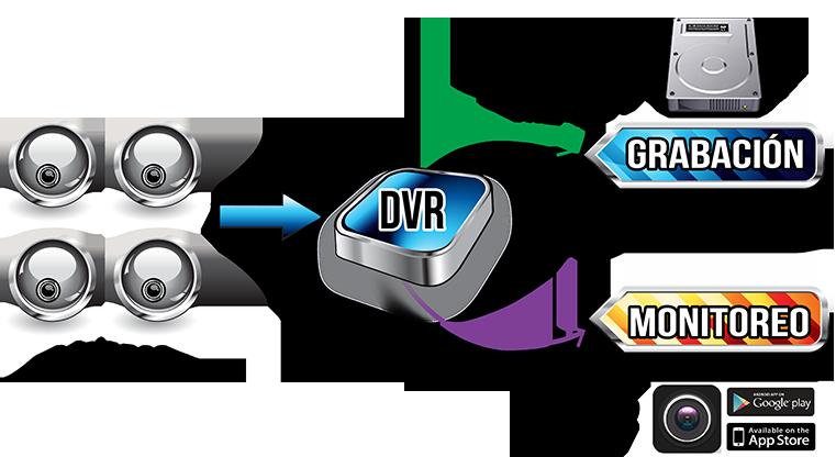Dual_Stream
